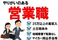平均年収300~350万円の人材営業職 土日祝休みで転勤なし イメージ